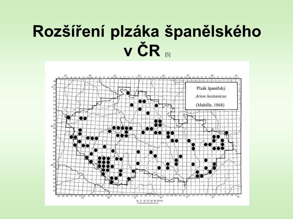 Rozšíření plzáka španělského v ČR [5]